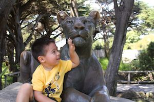 San Francisco Zoo, Nicholas and the Lion