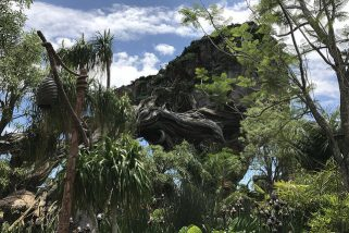Travel | The World of Avatar at Disney's Animal Kingdom